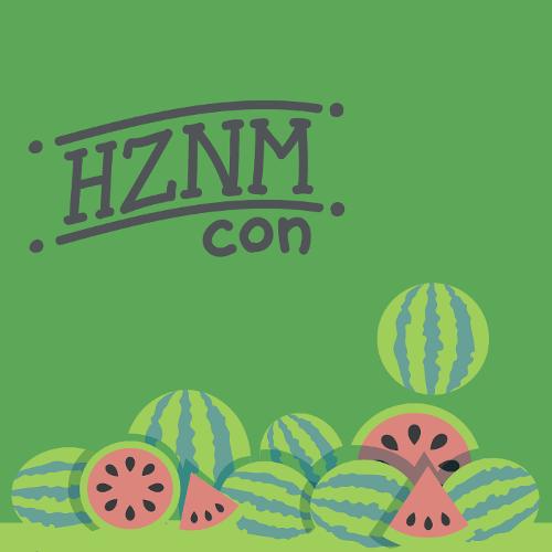 hznmcon.cz (2019)